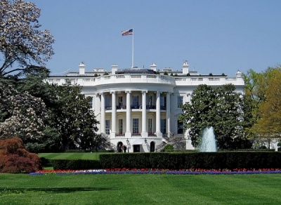 The president, the vice-president, the cabinet, and the Departments under the cabinet members, represent which branch of the United States government?