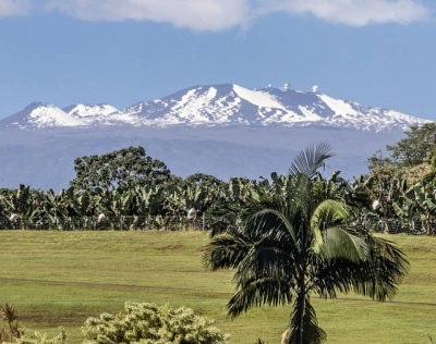 What is the tallest mountain on earth if measured from its base?
