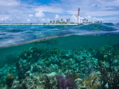 Which state is Biscayne National Park located?
